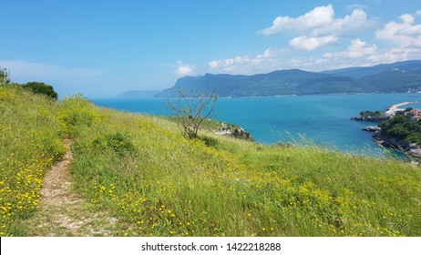 A beautiful natural path stretching into the horizon, a field with yellow wildflowers and green grass on the island north of Turkey, Amasra, summer day. Sea horizon with mountains.