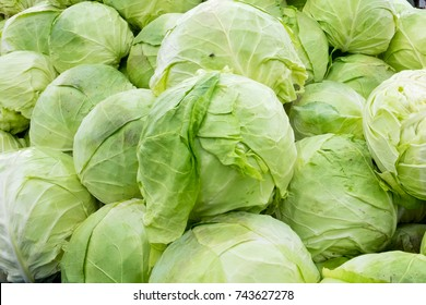 A beautiful natural pattern - variety of fresh leafy green cabbages on the stall of farmers' market in Serbia