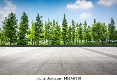 Beautiful natural scenery with many trees