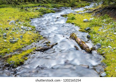beautiful natural scenery, streams in the forest, slow shutter shooting