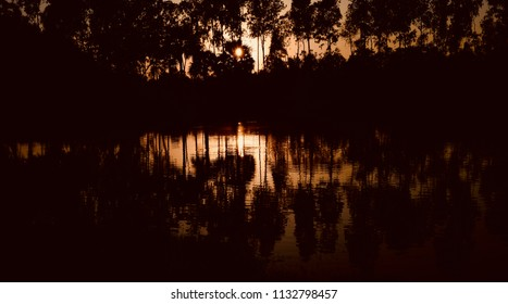 Beautiful natural tree shadows reflection in water unique photograph