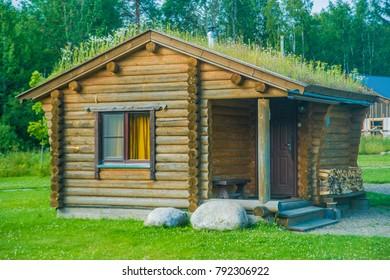 Beautiful natural wood house with grass and flower on roof. wooden home stand around summer forest. firewood near wall