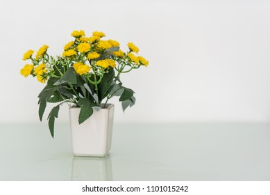Beautiful natural yellow flowers in vase put on the table.