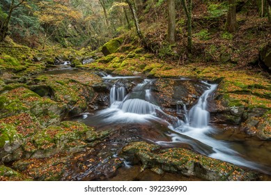 Beautiful in nature the Akame 48 waterfalls in autumn, Mie Prefecture , Japan