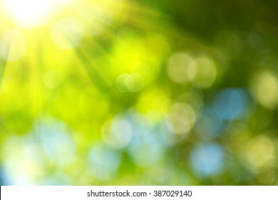 Beautiful Nature Blurred Background. Green Bokeh. Summer or spring backdrop with fresh green leaves and sun flares