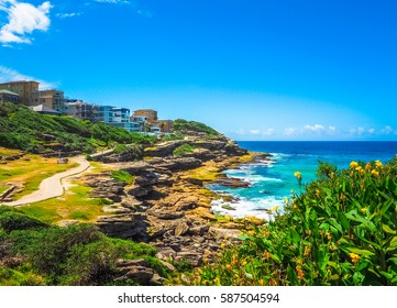 Beautiful Nature of Bondi to Coogee Beach Coastal Walk, Australia.