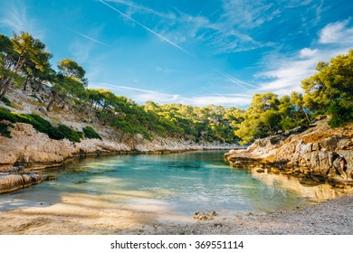 Beautiful nature of Calanques on the azure coast of France. Coast near Cassis in South France. Bay, pine forest and sunny morning blue sky.