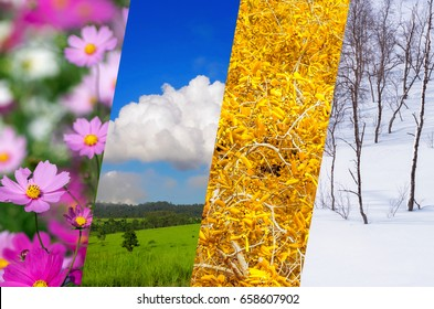 Beautiful nature collage - four seasons of year collage, different time of year - winter, spring, summer, autumn.