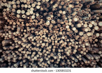 Beautiful nature cutting bamboo sticks texture use for pattern background