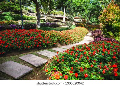 The beautiful nature of the flower park, public park suitable as background.