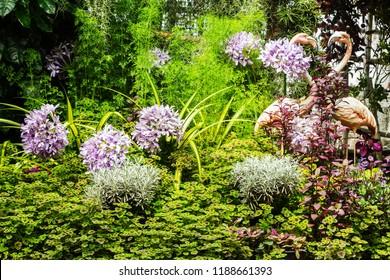 Beautiful nature garden background.