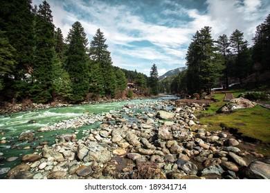The beautiful nature with Himalaya Mountain background (Kashmir, India)