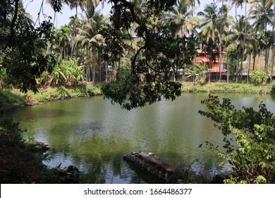 a beautiful nature in Kerala