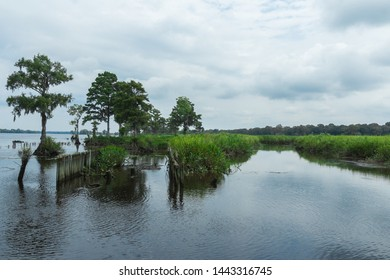 Beautiful nature landscape (bog, wetland), Pawleys Island, South Carolina, United States of America. Wide-angle shot. Cloudy day, reflection on the water (river).