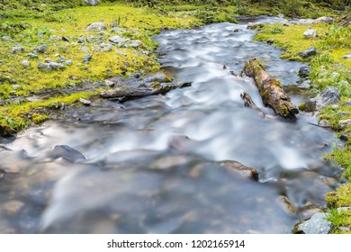 beautiful nature landscape of streams in the forest