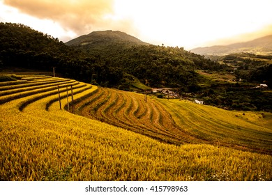 beautiful nature landscape with terraces field in Northern Vietnam