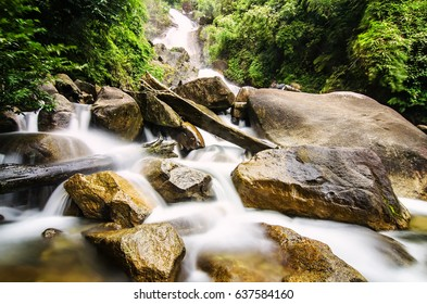 Beautiful in nature landscape, waterfall stream surrounded by green tropical green forest
