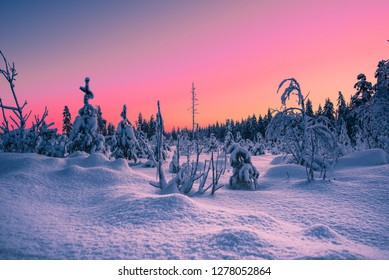 Beautiful nature of Lapland Finland