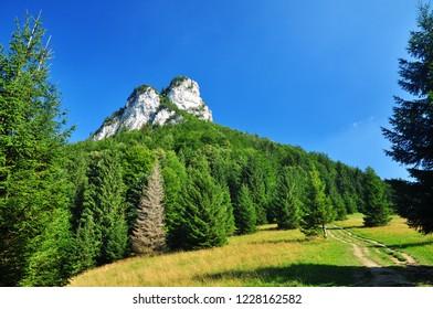 Beautiful nature of Mala Fatra summer mountains of Slovakia