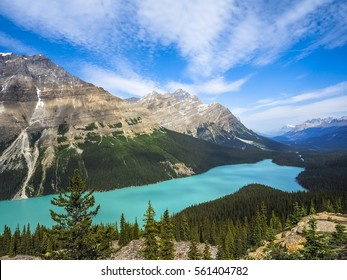 Beautiful Nature of Peyto Lake in Banff National Park, Canada.