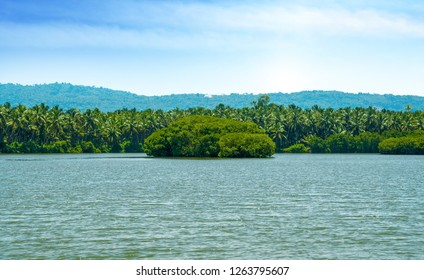 Beautiful Nature river Scenery of Kerala Kannur India, Awesome greenery shot from vayalapra God's own Country