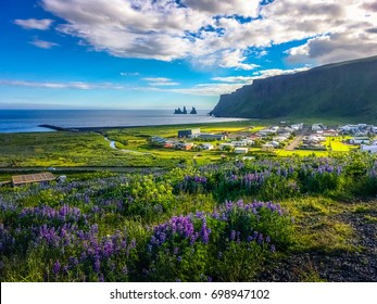 Beautiful Nature of Vik Town in Iceland. Icelandic Scenery in Summer.