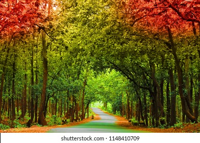 Hd Nature Picture Images Stock Photos Vectors Shutterstock