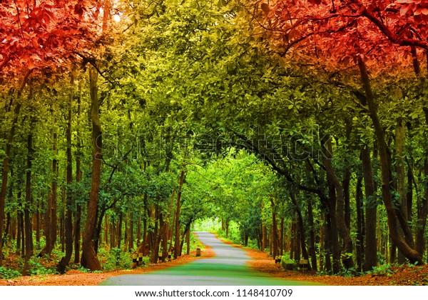 Beautiful Nature Wallpaper  Royalty-Free Stock Image