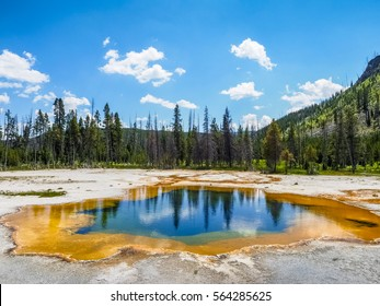 Beautiful Nature of Yellowstone National Park, USA.