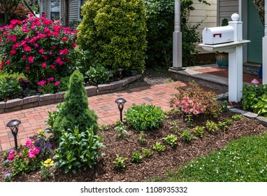 A beautiful neighborhood Summer garden with mailbox on  post.