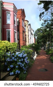 Beautiful neighborhood in Washington D.C., USA
