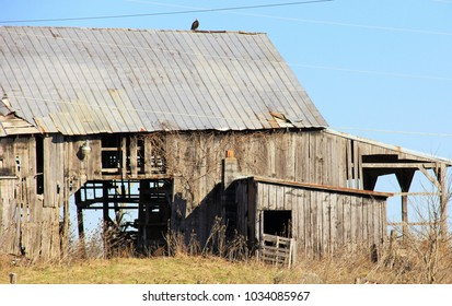 Beautiful new and vintage barns in Owen County, KY