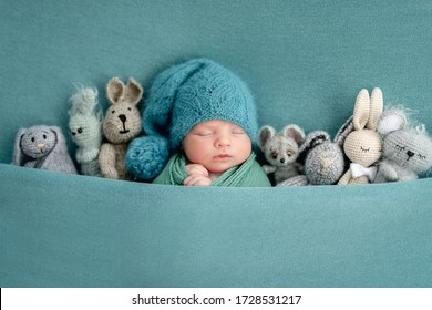 Beautiful newborn sleeping with knitted toys