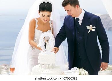 Beautiful newlyweds cut a wedding cake