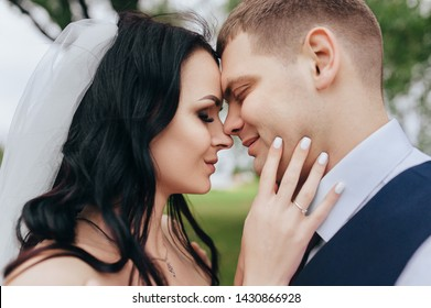 Beautiful newlyweds hugging against the backdrop of nature in the garden. Closeup wedding portrait of stylish bride and beautiful brunette bride with curly hair with veil.