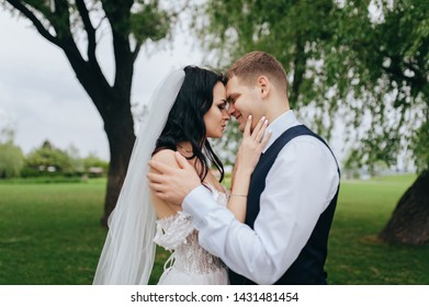 Beautiful newlyweds are hugging against the background of green grass and willows in the park and garden. Wedding portrait of a stylish bride and a beautiful bride with curly hair in a white dress.