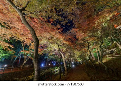 Beautiful night fall color of Kitano Tenmangu at Kyoto, Japan