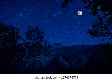 Beautiful night landscape with starry night mountains and forest. Night forest with green meadow and mountains in bright starry night or view of milky way