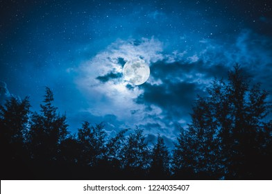 Beautiful night sky with many stars and full moon behind partial cloudy above silhouettes of trees. Serenity nature background. The moon taken with my camera.
