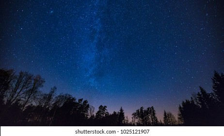 Beautiful night sky with Milky Way over forest. Night landscape.