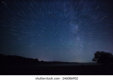 a beautiful night sky, the Milky Way, star trails and the trees