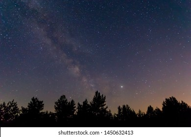 beautiful night starry sky with milky way above the night forest