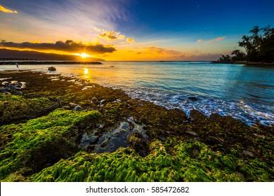 Beautiful North Shore of Oahu sunset