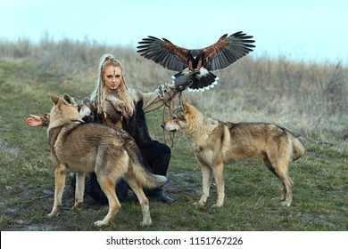 Beautiful northern warrior woman in viking clothes with wolves and Harris Hawk (Parabuteo unicinctus). Viking woman with predators in the wild.