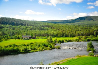 Beautiful Norway forest landscape and scenery view of hills, mountain and river in a sunny day