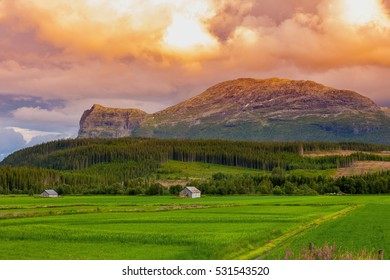 Beautiful norwegian mountain landscape with rural farm house, green grass field, wood and rocks at sunset time for background, Norway, Europe