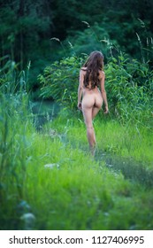 Beautiful Nude Young Woman On The River Shore Overgrown with Grass and Reeds