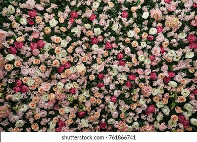 The beautiful nylon rose decoration background for the bankquet/celebration on the wall.