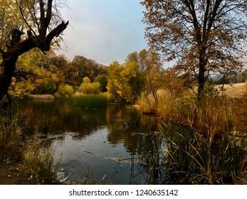 Beautiful Oak Glen Water Scene in Autumn