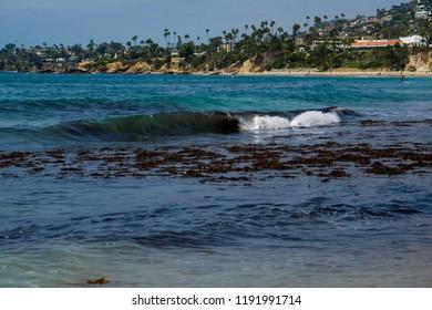 beautiful ocean sea scape landscape in laguna beach california main beach